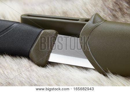 knife for hunting and fishing a highlight on the blade