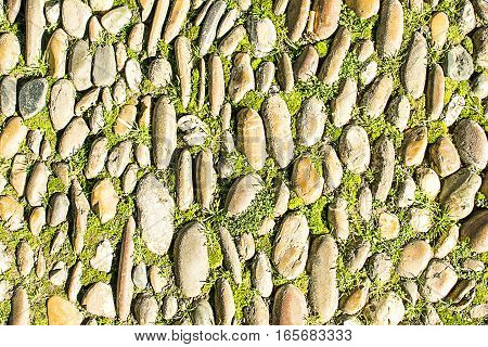 Old stone pavement with green grass closeup. Background