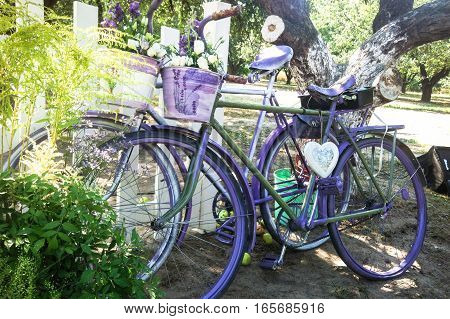 two old Retro vintage  purple bike in the style of Provence