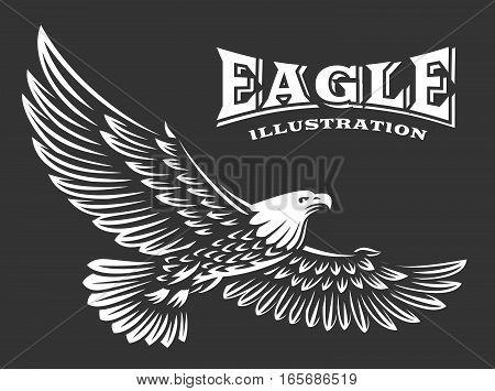 Eagle vector illustration, emblem design on dark background