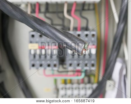 The power cord on a background of electric panel