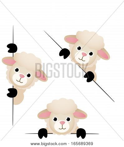 Scalable vectorial image representing a cute sheep peeking from behind in various positions, isolated on white.