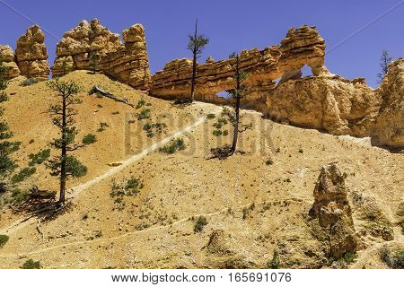 Trail to the Ridge of Bryce Canyon National Park