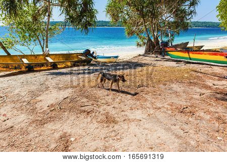 View of Jaco Island a natural reserve aprk in East Timor South East Asia