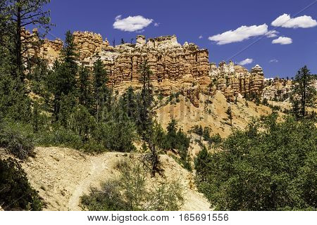 Red Canyon Ravine in Bryce Canyon National Park