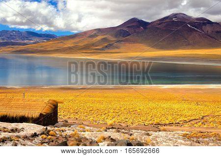 Frozen Lake Miscanti in the highlands of Chile near San Pedro de Atacama