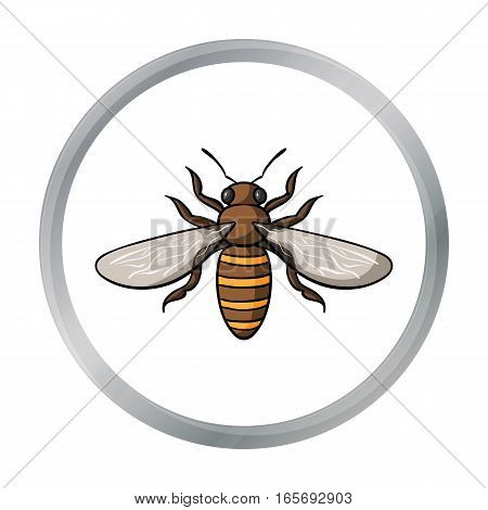 Bee icon in cartoon design isolated on white background. Insects symbol stock vector illustration.