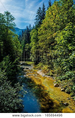 Sunlit Mountain Creek with Clear Water in Austria