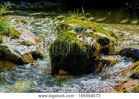 Creek with Fast Flowing Clear Water in Austria