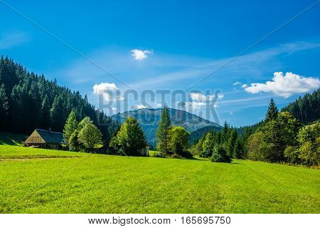 Abandoned Farm in Tree-Covered Valley in Austria