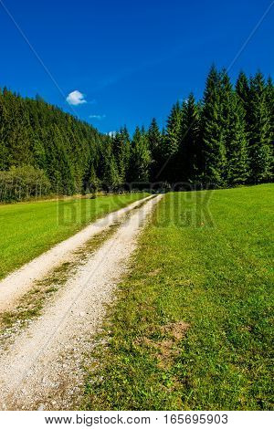 Abandoned Gravel Road through Forest-Covered Valley in Austria