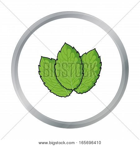 Mint icon in cartoon style isolated on white background. Herb an spices symbol vector illustration.