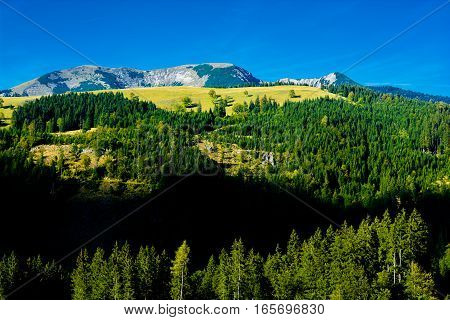 Alpine Landscape with Mountains and Forests in Austria