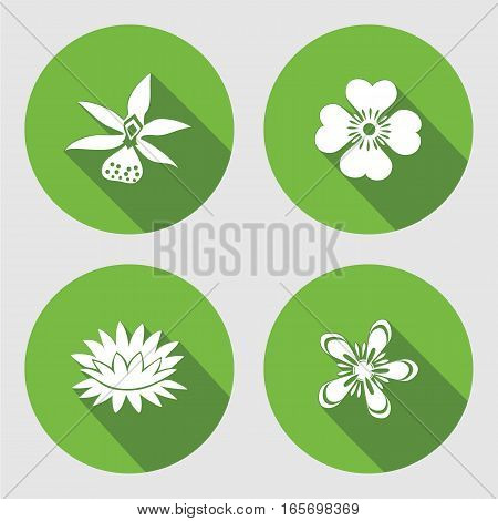 Flower icons set. Anemone, chamomile, forget-me-not, lily, water-lily, orchid. Floral symbols. Round circle flat sign  with long shadow. Vector