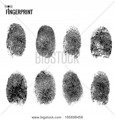 Vector fingerprint set. Distressed finger mark on white background. Texture element for your design.