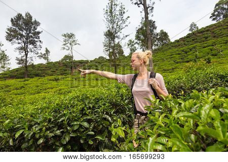 Active caucasian blonde woman, pointing at something in distance, enjoing fresh air and pristine nature while tracking among tea plantaitons near Ella, Sri Lanka.