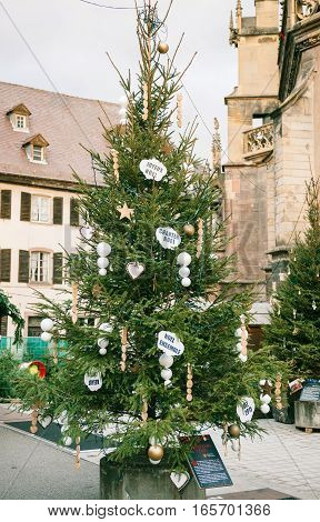 Green Christmas tree with traditional French whishes in the old Christmas Market of Thann village in France