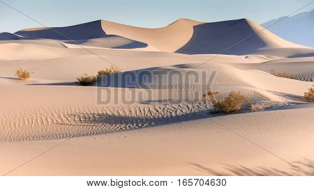 Mesquite Flat Sand Dunes, Sunrise, Death Valley National Park, California, USA