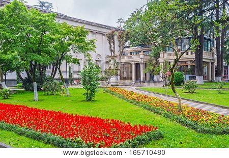 The Colorful Flower Beds
