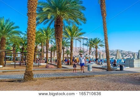 EILAT ISRAEL - FEBRUARY 23 2016: Eilat boasts very comfortable beaches surrounded by green shady gardens of slender palms on February 23 in Eilat.