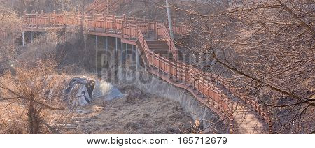 Wooden walkway hidden in a wooded area bathed in sunlight