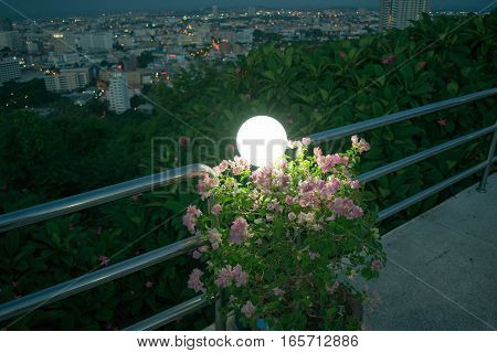 Lamps on the flowers against the backdrop of the city.