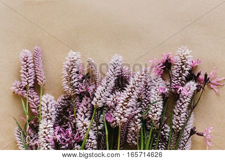Unusual Beautiful Violet And Pink Flowers On Craft Background, Space For Your Text