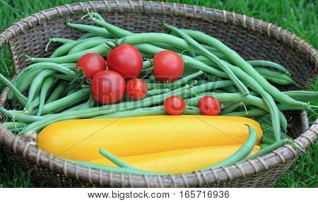 Basket of Green Beans, Yellow Zucchini and Ripe Red Tomatoes