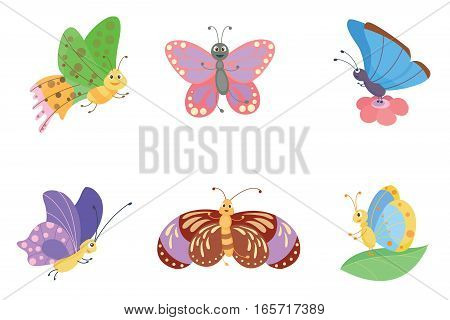 Colorful butterflies with abstract decorative pattern vector. Graphic summer free fly present silhouette. Beauty nature spring insect decoration.
