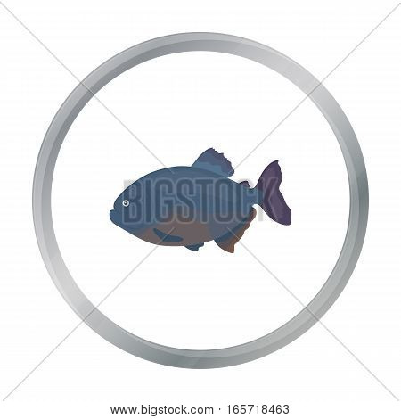 Piranha fish icon cartoon. Singe aquarium fish icon from the sea, ocean life cartoon. - stock vector