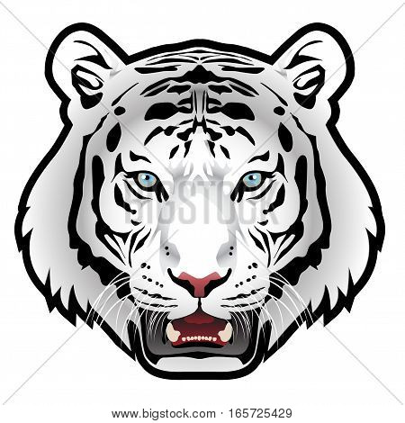 White tiger head isolated background vector illustration.