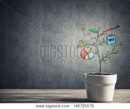 Concept of successful business plan and strategy presented by growing tree