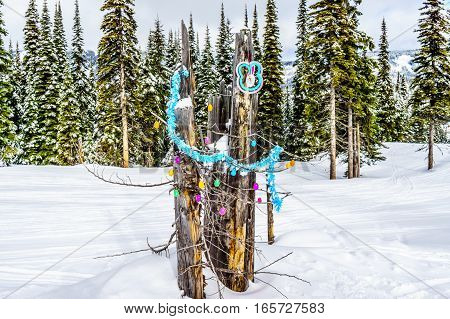 Easter Bunny and Eggs in the Winter Landscape on the Ski Hills in the Shuswap Highlands of central British Columbia, Canada