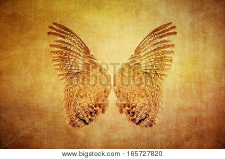 Textured grunge brown and gold background with pair of owl wings