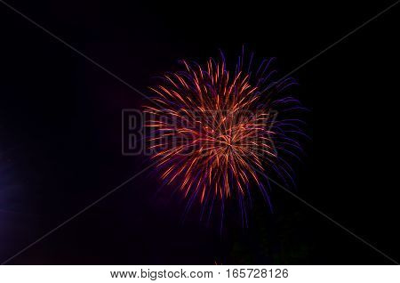 Vibrant fireworks on a black back ground