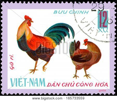 VIETNAM - CIRCA 1968: postage stamp printed in Vietnam shows cock and hen, a series of domestic fowl