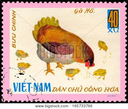 VIETNAM - CIRCA 1968: postage stamp printed in Vietnam shows hen with chicks, a series of domestic fowl