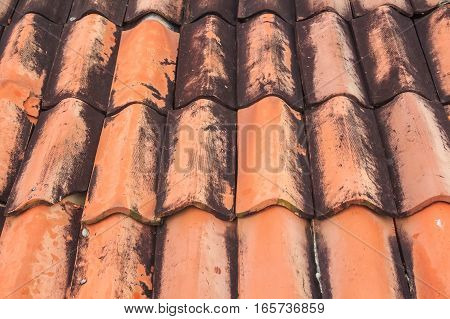 Orange tile pattern of roof, close up texture for construction industry