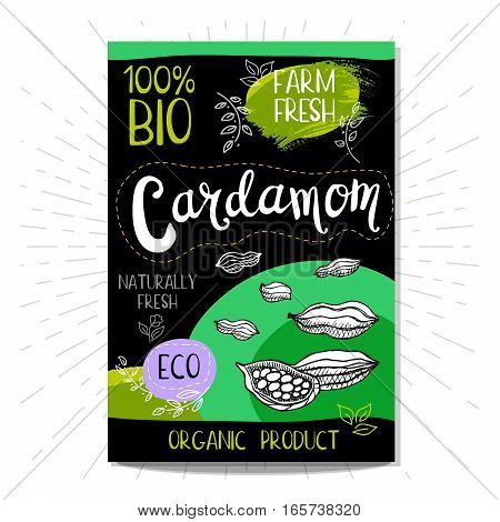 Colorful label in sketch style, food, spices, black background. Cardamom. Spice. Bio, eco, farm, fresh. locally grown. Hand drawn vector illustration.