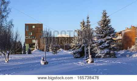 UMEA, SWEDEN ON JANUARY 16. View of an artwork, art this side the Institute of Art and Design on January 16, 2017 in Umea, Sweden. Heart of trees, Jaume Plensa. Winter Editorial use.