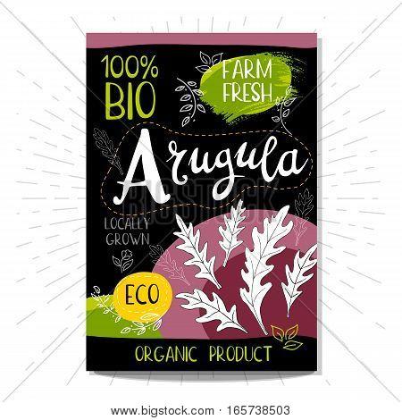 Colorful label in sketch style, food, spices, black background. Arugula. Spice. Bio, eco, farm, fresh. locally grown. Hand drawn vector illustration.