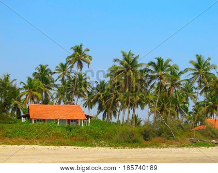 House under the palm trees on the beach of the Indian Ocean