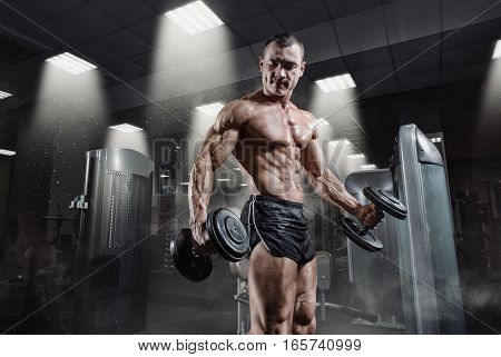 Handsome power athletic bodybuilder in training pumping up muscles with dumbbell in gym. Strong bodybuilder with perfect abs shoulders biceps triceps and chest