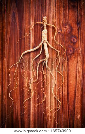Dry ginseng on a wood background (Concept of traditional Chinese medicine)