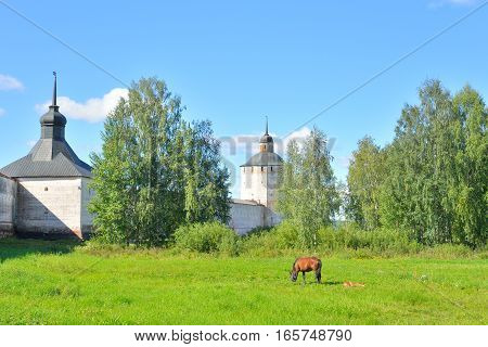 Kirillo-Belozersky monastery and horse grazing in meadow by day near City Kirillov Vologda region Russia.