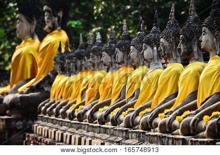 Row of buddha image in wat yai chai mongkol, Ayutthaya, Thailand