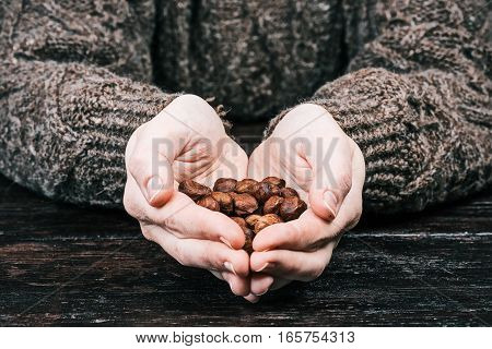 Human hands folded like a heart holding nuts and givivng them to the viewer. Closeup front view