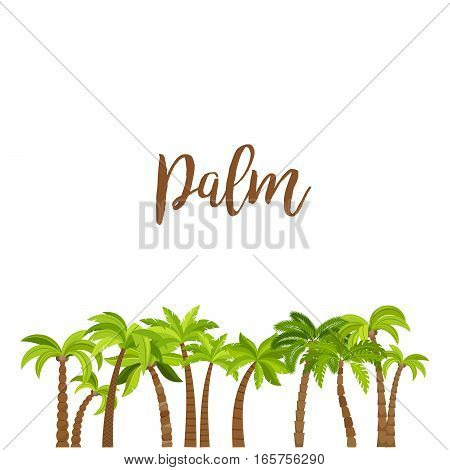 Cartoon colored palm trees forest, isolated on white background. Vector illustration