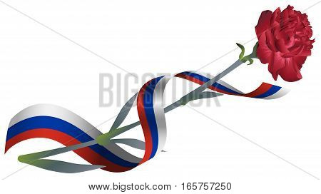 Red carnation flower and ribbon tricolor Russian flag. Isolated on white vector illustration