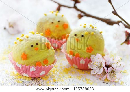Easter chick treat for kids - homemade candy cake pops with yellow chocolate shaped Easter chicken